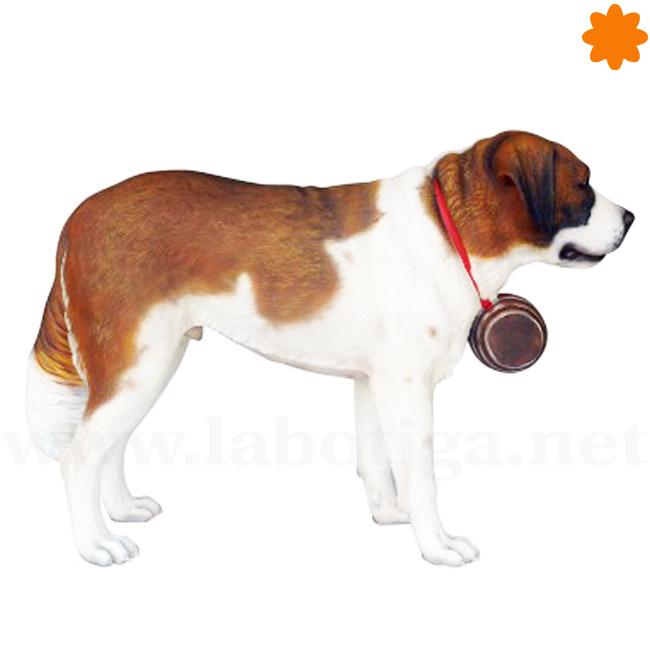 sistema-excretor-del-perro